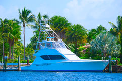 Sport fishing yacht with lush tropical background Royalty Free Stock Image