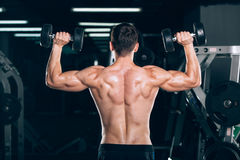 Sport, fitness, lifestyle and people concept - Muscular bodybuilder guy doing exercises with dumbbells in gym. Stock Images