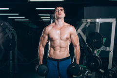 Sport, fitness, lifestyle and people concept - Muscular bodybuilder guy doing exercises with dumbbells in gym. Stock Image