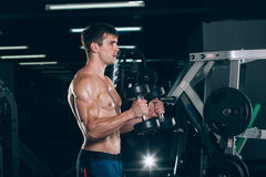 Sport, fitness, lifestyle and people concept - Muscular bodybuilder guy doing exercises with dumbbells in gym. Royalty Free Stock Image