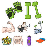 Sport and fitness set icons in cartoon style. Big collection of sport and fitness vector symbol stock illustration Stock Image