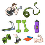Sport and fitness set icons in cartoon style. Big collection of sport and fitness vector symbol stock illustration Stock Photos