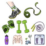 Sport and fitness set icons in cartoon style. Big collection of sport and fitness vector symbol stock illustration Stock Images
