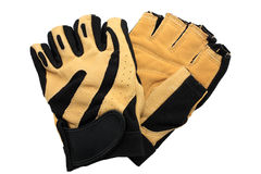 Sport gloves Stock Photography