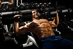 Sport guy. Very power athletic guy ,  execute exercise press with  dumbbells, in sport hall Royalty Free Stock Photos