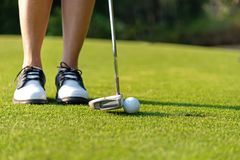 Sport Healthy. Close up Golfer asian sporty woman focus putting golf ball on the green golf on evening time. stock images