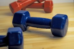 Sport in the home, dumbbells red and blue Royalty Free Stock Image