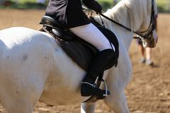 Sport horse canter during competition under saddle outdoors. Sport horse close up under old leather saddle on dressage competition. Equestrian sport background stock image
