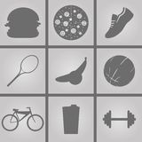 Sport icons. Set of Icons on a theme sport Royalty Free Stock Image