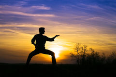 Sport karate. Man karate in the sunset Royalty Free Stock Photography