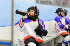 Kids ice hockey. Sport for Kids. Young ice hockey players royalty free stock photos