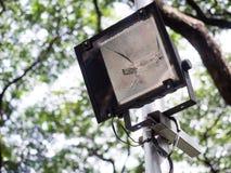 Sport latarnia z drzewa tłem lub światło Obrazy Stock