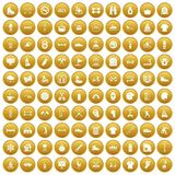 100 sport life icons set gold. 100 sport life icons set in gold circle isolated on white vectr illustration Royalty Free Stock Image