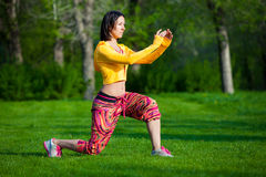 Sport and lifestyle concept - woman doing sports. Push ups or press ups exercise by young woman. Girl working out on grass crossfit strength training in the glow Stock Photos