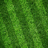 Sport lined grass field Stock Photo