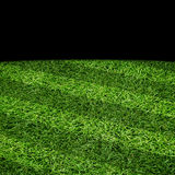 Sport lined grass field Royalty Free Stock Photography