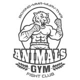 Sport logo for fighting club. Template sport logo for fighting club with angry muscular tiger Stock Photo