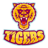 Sport logo with tiger head. Royalty Free Stock Photography