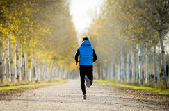 Sport man running outdoors in off road trail ground with trees under beautiful Autumn sunlight. Back view young sport man running outdoors in off road trees Royalty Free Stock Photography