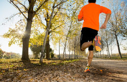 Sport man with strong calves muscle running outdoors in off road trail ground with trees under beautiful Autumn sunlight Stock Photos