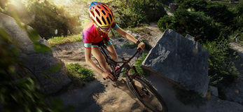 Sport. Mountain Bike cyclist. Riding single track Stock Photos