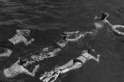 Sport, passe-temps Groupe de personnes nageant sous l'eau en mer Photographie stock libre de droits