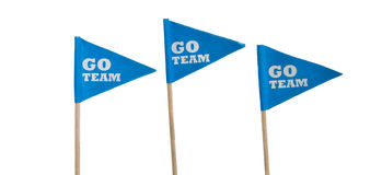 Sport pennants on a white background. Blue Go Team sports pennants on a white background Stock Image