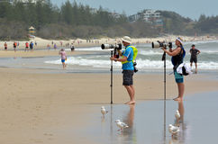 Sport photographers photographing on the beach Royalty Free Stock Photos