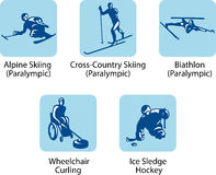 Sport pictograms (paralympic). Vector sport pictograms which will be using on the winter olympic games 2010, Vancouver, Canada stock illustration