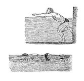 Sport preparation, swimming. Learning to swim, vintage illustration Stock Image