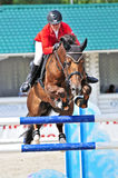 Sport. Rider with horse jumps over a hurdle Stock Images