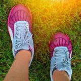 Sport running shoes. With grass background Stock Photos