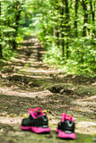 Sport shoes in the forest on a footpath royalty free stock photography