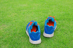 Sport shoes on grass. Royalty Free Stock Photography