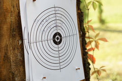 Sport shooting target. Practicing shooting with shothun in simple terget outdoors Stock Photos