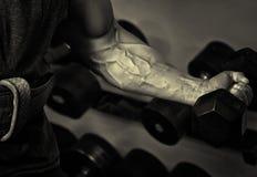 sport Silna atleta trzyma dumbbell w jego mięśniowej ręce Obrazy Royalty Free