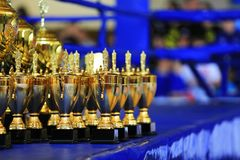 Sport stack gold trophy cup in the ring. Victory, win, decoration, champion stock images
