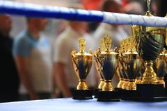 Sport stack gold trophy cup in the ring. Victory, win, decoration, champion royalty free stock images