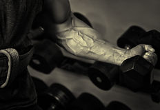Sport. Strong athlete holding a dumbbell in his muscular arm Royalty Free Stock Images