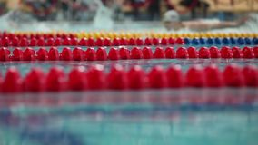 Sport swimming close to low angle view stock video footage