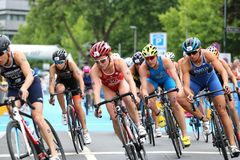 Sport swimming triathlon. A head on shot of a group of female triathletes racing on bikes Royalty Free Stock Image