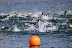 Sport triathlon swimming. A big group of swimmers creating lots of splashing doing the front crawl stroke during a triathlon at Dorney Lake, England Royalty Free Stock Image