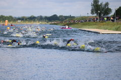 Sport triathlon swimming. A head on view of a lot of swimming triathletes during a triathlon at Dorney Lake, England Royalty Free Stock Photos