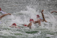 Sport triathlon swimming. Male triathletes swimming in a big group in Docklands during the London Triathlon Stock Image