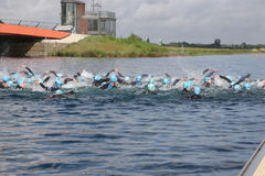 Sport triathlon swimming Stock Photos