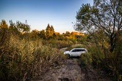 Sport und Bäume Mitsubishis Pajero im Herbst an einem sonnigen Tag Chabarowsk, Russland 12. Oktober 2018 stockbild