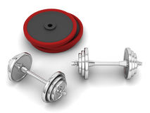 Sport weights Royalty Free Stock Images