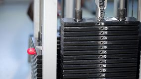 Sport weights in gym stock footage
