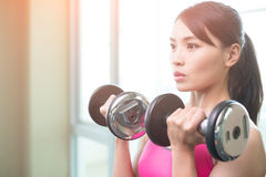 Sport woman with dumbbell. Sport woman hold dumbbell and training hard in the gym Royalty Free Stock Photo