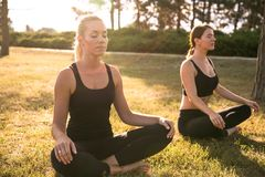 Sport women doing yoga outside in morning Royalty Free Stock Image